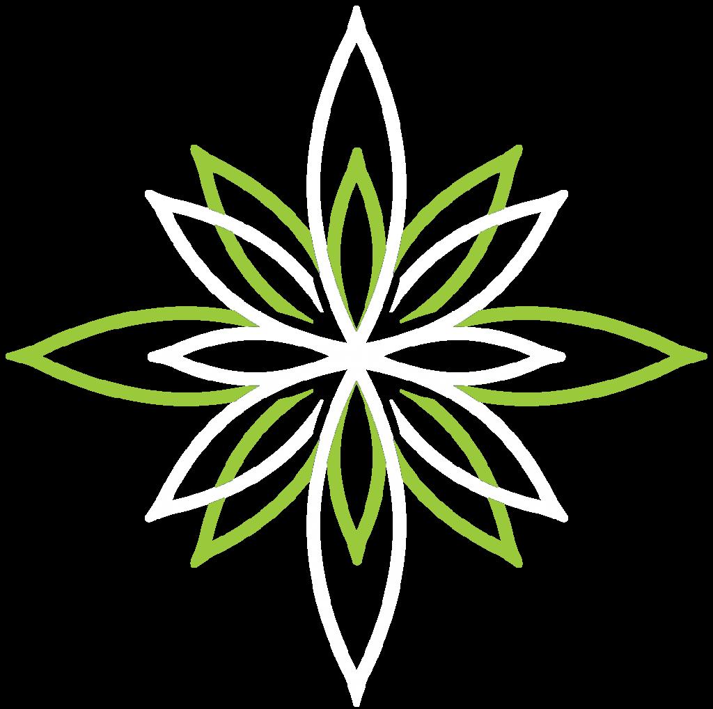 CBplus-Flower1